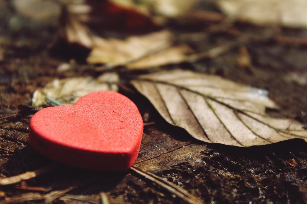 heart-1318850